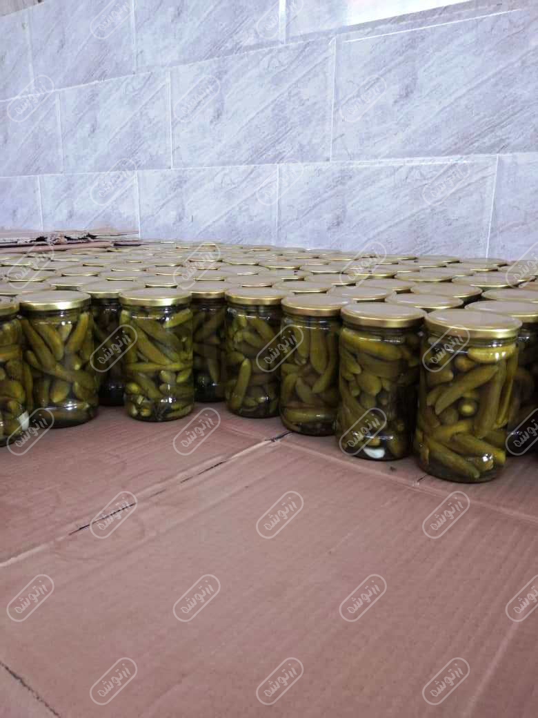 فروش خیارشور ویژه