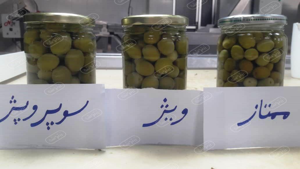 فروش زیتون شور اصفهان