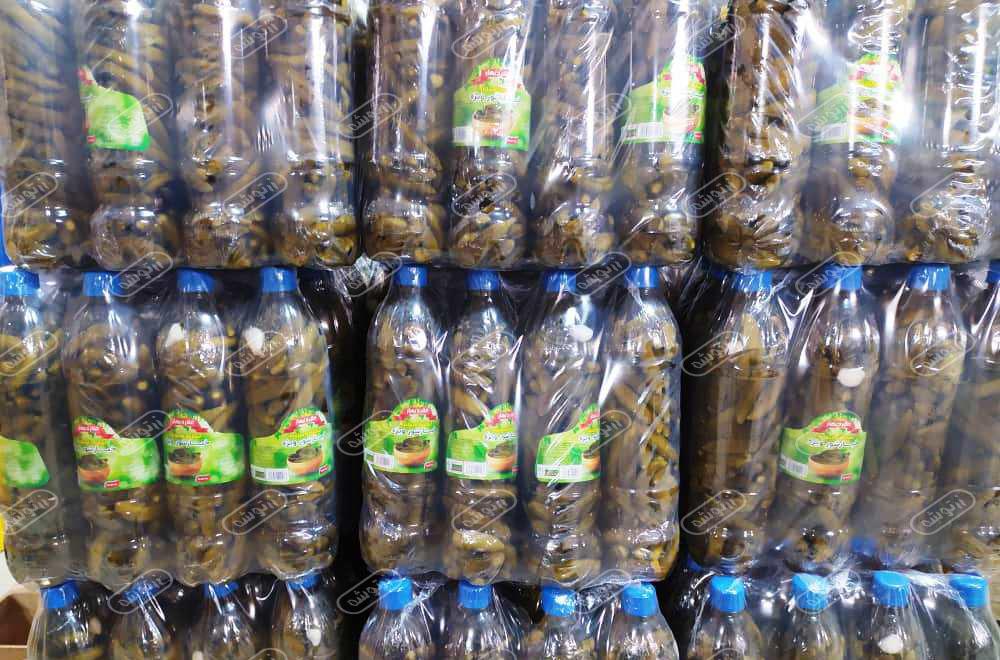 فروش خیارشور در کرمان