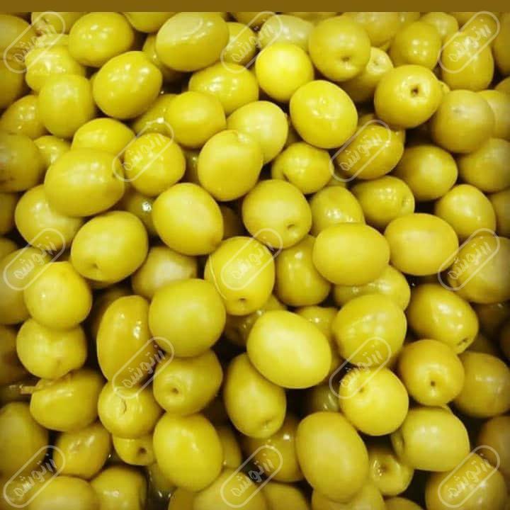 فروش زیتون گلچین خزر